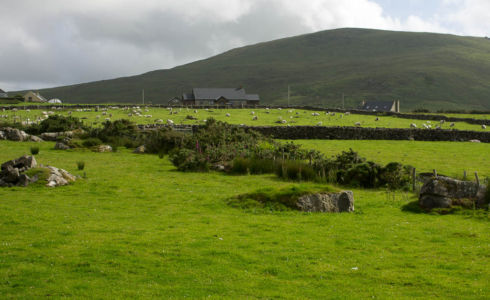 Paysage de la péninsule de Dingle.