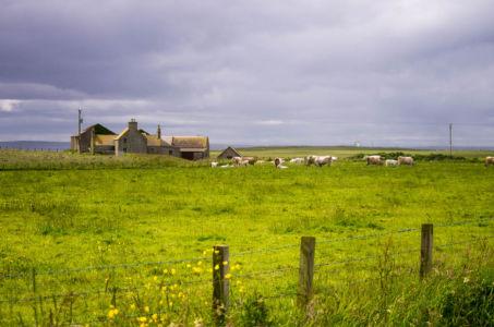 South Ronaldsay sur l'archipel des Orcades