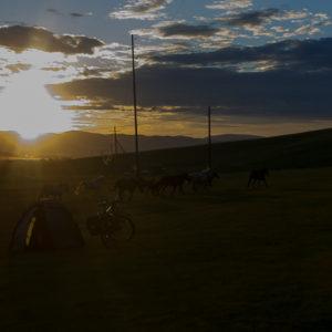 Coucher de soleil sur la steppe